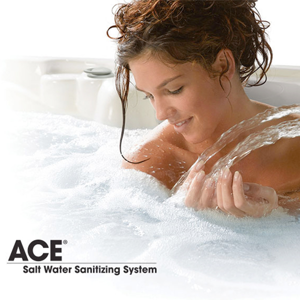 ACE® Salt Water Sanitizing System Product Image